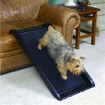 Smart Dog Ramp Jr