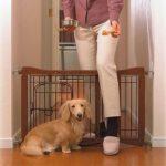 Pet Sitter Pet Gate