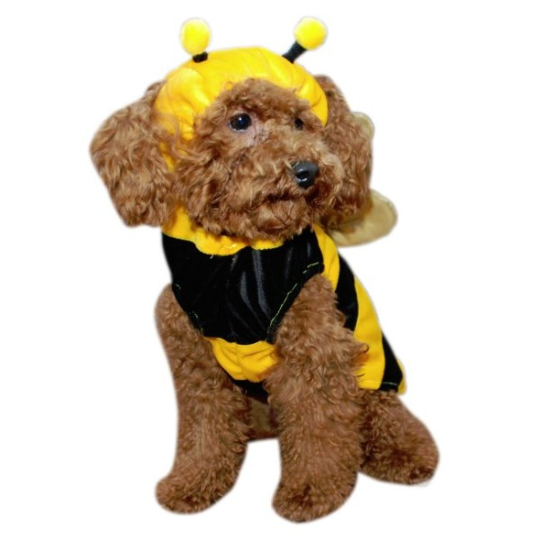 Bumble Bee Dog Costume Houndabout