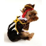 Pirate Dog Costume (Captain)