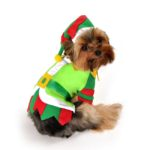 Santas Lil Helper Dog Costume
