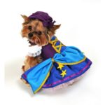 Gypsy Dog Costume
