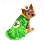 Superhero Dog Costume (Green)
