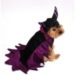 Wicked Dark Fairy Dog Costume