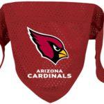 Arizona Cardinals NFL Mesh Bandana