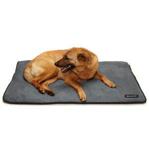 Big Shrimpy Landing Pad Dog Bed