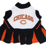 Chicago Bears NFL Dog Cheerleader Outfit