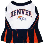 Denver Broncos NFL Dog Cheerleader Outfit
