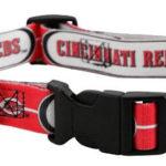 Cincinnati Reds Dog Collar