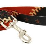 Houston Astros Dog Leash
