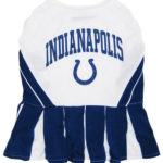 Indianapolis Colts NFL Dog Cheerleader Outfit