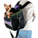 Comfy Go Backpack Carrier