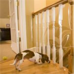 Pet Banister Barrier