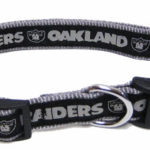 Oakland Raiders NFL Dog Collar