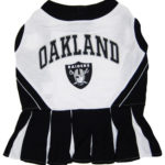 Oakland Raiders NFL Dog Cheerleader Outfit