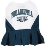 Philadelphia Eagles NFL Dog Cheerleader Outfit
