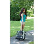 I-GO2 Traveler Pet Carrier (Sage)