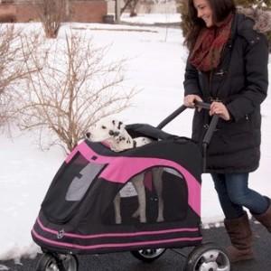Roadster Pet Stroller - Pink