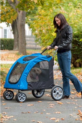 Expedition Pet Stroller - Blue