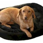Bolstered Fur Pad Dog Bed by Snoozer