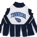 Tennessee Titans NFL Dog Cheerleader Outfit