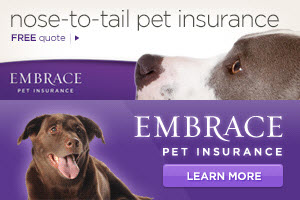 Embrace Pet Insurance Free Quote Tool Review