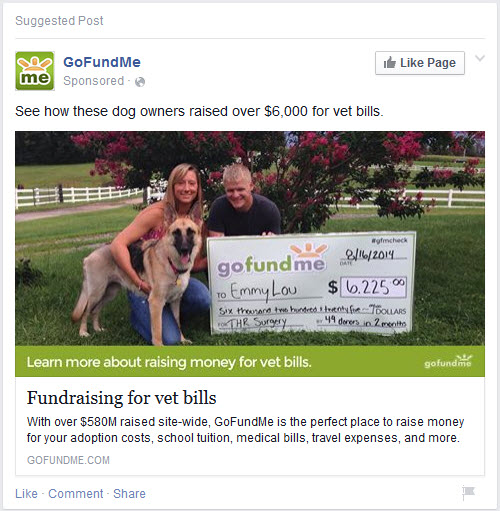 Fundraising for Vet Bills