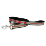 Arizona Diamondbacks Reflective Nylon Dog Leash Size Large