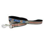 Texas Rangers Reflective Nylon Dog Leash Size Large