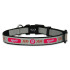Washington Nationals Reflective Nylon Dog Collar Size Small