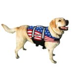 Pawz Pet Products US Flag Nylon Dog Life Jacket