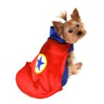 Superhero Dog Costume (Red)