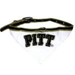 Pittsburgh Panthers Dog Collar Bandana