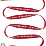 Wisconsin Badgers Dog Leash