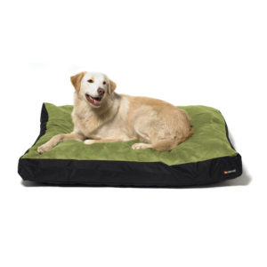 Big Shrimpy Original Dog Bed - Leaf with Dog
