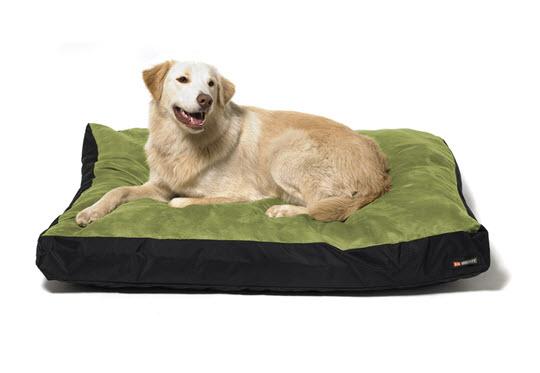 Big Shrimpy Original Dog Bed