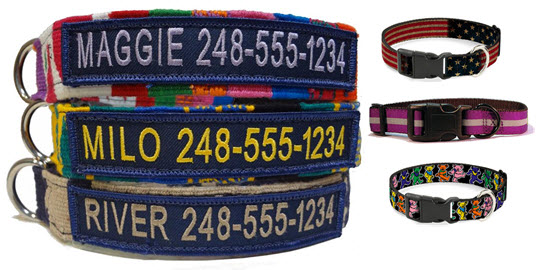 Variety of Dog Collars